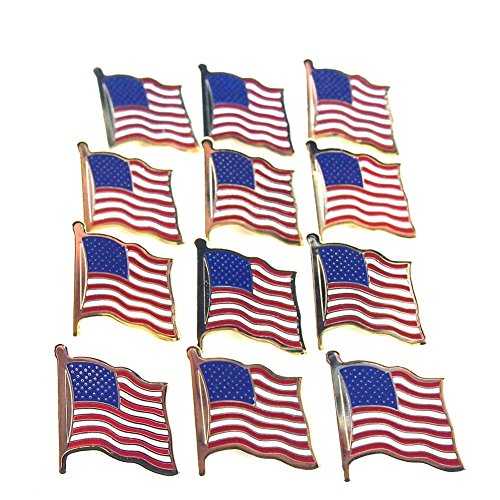 12 American Flag Waving Lapel Pins U.S.A. United States -