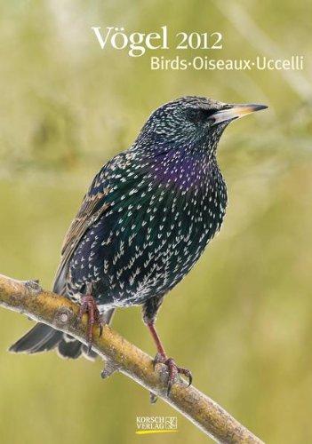 Großer farbiger Vogelkalender, Birds, Oiseaux, Uccelli 2012