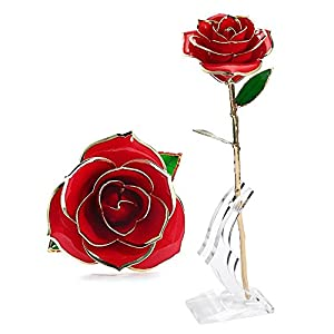 Wefond Long Stem 24K Gold Rose Flower Foil Trim Romantic Rose with Display Stand in Gift Box for Valentine's Day, Anniversary, Birthday, Wedding, Thanksgiving and Christmas 4