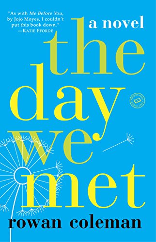 The Day We Met: A Novel cover