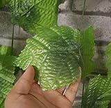 Colorfulife® Artificial Lifelike Silk 300cm