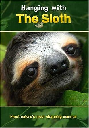 amazon com hanging with the sloth jeri ledbetter movies tv