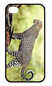 The eyes of the cheetah Durable Back Case Hard Covers For iPhone 4,4s