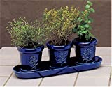 French Country Indoor Herb Garden Trio Gift Set