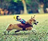 Pet Dog Costume Pet Suit Cowboy Rider Style Dog Suit Clothes (S)