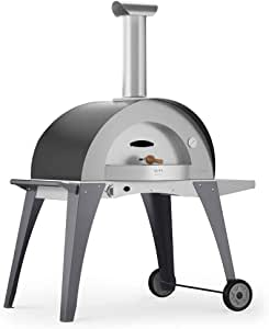 Alfa Horno a gas GLP de exterior (acero Pizza Domo gris: Amazon.es: Jardín