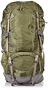 Gregory Whitney 95 Backpack (Humboldt Green,Large)