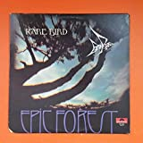 RARE BIRD Epic Forest 1972 Polydor PD 5530 LP Vinyl VG+ Cover VG+