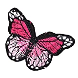 Colorful Butterfly Custom Patches Sticker Sew On Applique-03