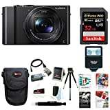Cheap Panasonic LUMIX 4K Digital Camera with 32GB SD Card & Corel Suite Bundle