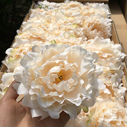 (CoronationSun - Artificial Bouquet Peony - 20pcs/lot Artificial Peony Flower Head Wedding Party Christmas Decoration DIY Silk Flower Wall Background Decor Accessories)