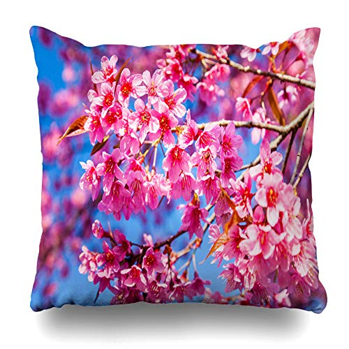 (Ahawoso Throw Pillow Covers Green Cherry Blossom Nature Spring Parks Many Pink Alley Avenue Bloom Blossoming Design Garden Home Decor Zippered Pillowcase Square Size 16 x 16 Inches Cushion Case)