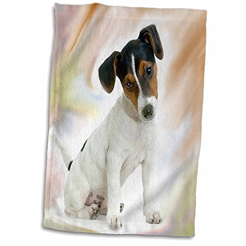 3D Rose Jack Russell Terrier Towel, 15 x 22