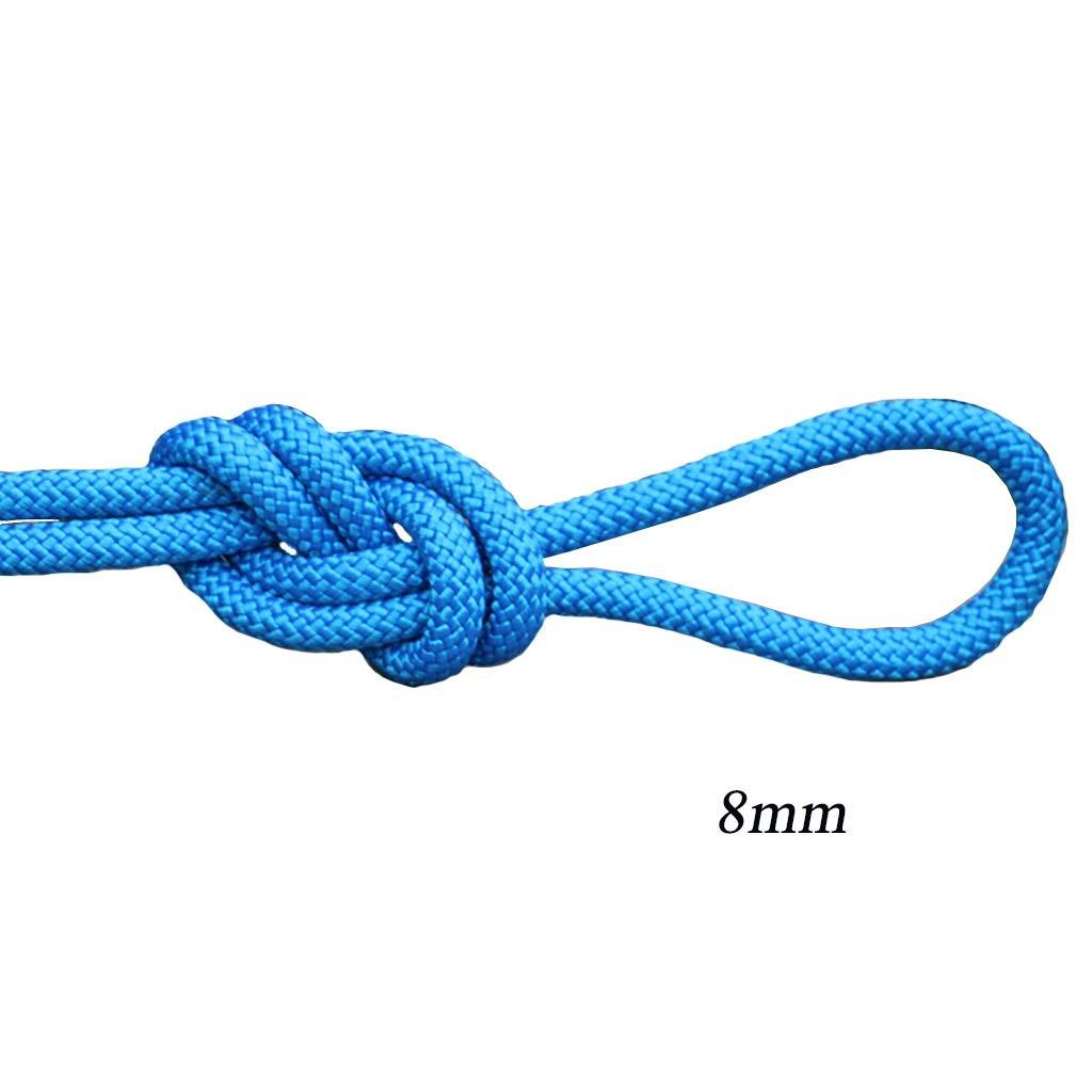 LIZIPYS Cordes Corde de sécurité Cordes statiques d'extérieur Convient pour Le développement en Descente extérieur Travail aérien 8mm (0.31in) Bleu