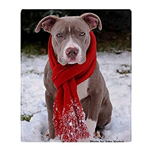 CafePress-Holiday Pit Bull with Red Scarf-Soft Fleece Throw Blanket 5