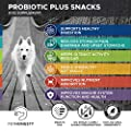PetHonesty Probiotics for Dogs, 90 All-Natural Advanced Dog Probiotics Chews with Prebiotics, Relieves Dog Diarrhea and Constipation, Improves Digestion, Allergy, Hot Spots, Immunity & Health
