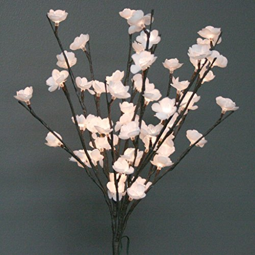 - The Light Garden WTFL6020-B Battery Powered White Plum Tree Floral Accent, 60 LED Bulbs