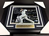 GARY SANCHEZ AT BAT AUTOGRAPHED 8X10 PHOTO STEINER COA FRAMED NEW YORK YANKEES