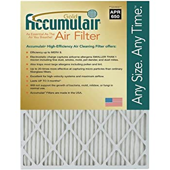 Nordic Pure 16x18x1 Exact MERV 13 Tru Mini Pleat AC Furnace Air Filters 2 Pack