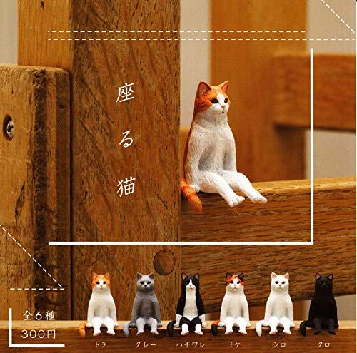 앉아 고양이 [전 6 종 세트 (풀 무료 초대권)
