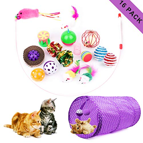 16 Piece Cat Toy Set