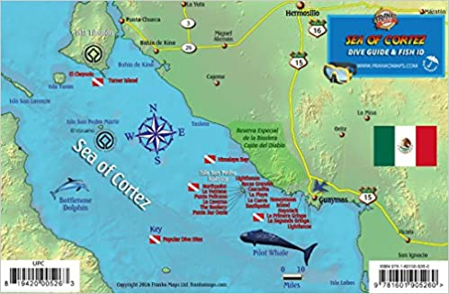 Central Sea of Cortez Mexico Dive Map & Reef Creatures Guide ...
