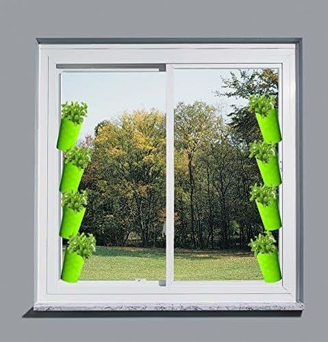 Indoor Window Veggies Herb Window Self