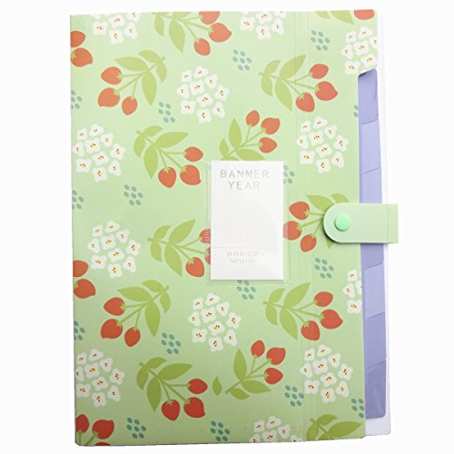 YOOFUN 8 Pockets Portable Accordion Document Expanding File Folder,Letter Size and A4 File Organizer (Green1)
