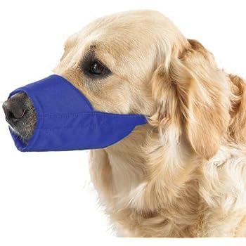 Guardian Gear Nylon Lined Fashion Dog Muzzle, 8-1/4-Inch Snout, Size 5, Blue