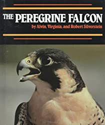 Peregrine Falcon,The (Endangered in America)