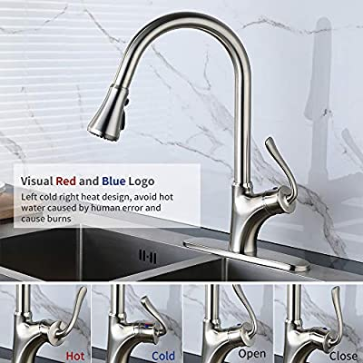 HOMELODY Kitchen faucet