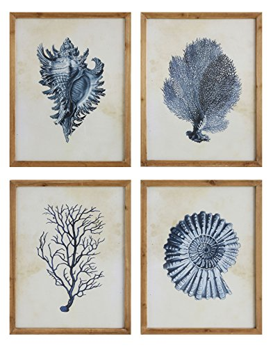 Creative Co-Op Wood Framed Wall Art with Blue Shells & Coral (Set of 4 Designs)