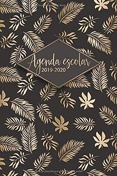 Agenda Escolar 2019 2020: Agenda 2019 - 2020   El calendario semestral y planificador de estudios para el nuevo año académico 2019 - 2020