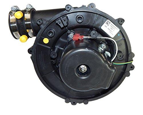 York Furnace Cheque Inducer (7058-1023, 341449) 115V Fasco # A984