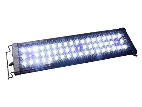 Lampada led per acquario luce bianca e blu con modalità di
