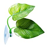 CousDUoBe 2 Pack Betta Fish Leaf Pad Improves