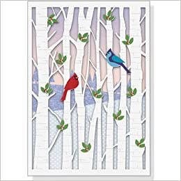 birds in birches holiday boxed cards laser cut christmas cards holiday cards greeting cards peter pauper press 9781441307675 amazoncom books - Laser Cut Christmas Cards