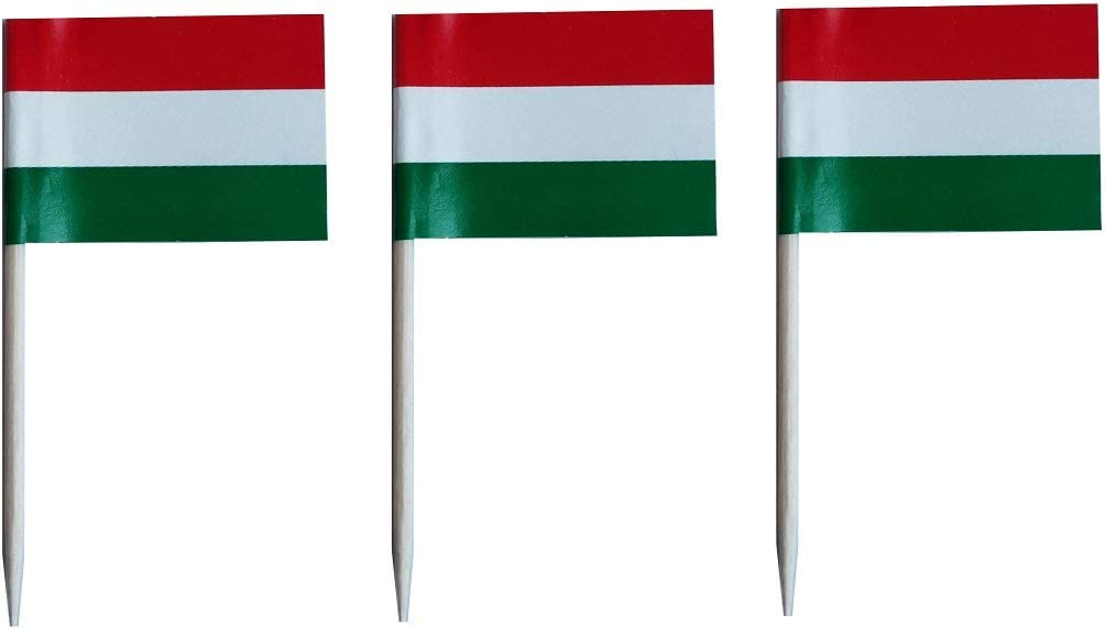 JAVD CYPS 100 Pcs Hungary Flag Hungarians Toothpick Flags, Small Mini Stick Cupcake Toppers Hungarians Flags,Country Picks Party Decoration Celebration Cocktail Food Bar Cake Flags