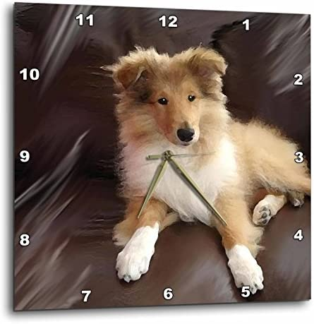 3dRose dpp_4546_2 Rough Collie Puppy-Wall Clock, 13 by 13-Inch