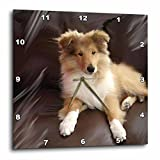 Cheap 3dRose dpp_4546_2 Rough Collie Puppy-Wall Clock, 13 by 13-Inch