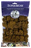 SuperMoss (23090) Reindeer Moss Preserved, Brown, 2oz