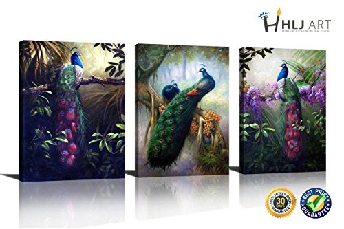 HLJ ART 3 Panel Animals Canvas Print Wall Art Painting For Living Room Decor And Modern Home Decorations Peacock Photo Prints (Wood Framed) (Painting Wall Peacock)