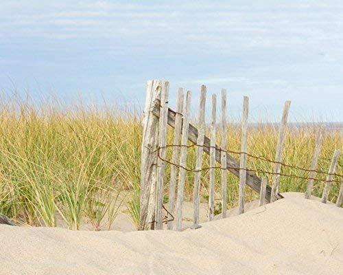 Beach Fence Photo with Sand Dune and Beach Grass -
