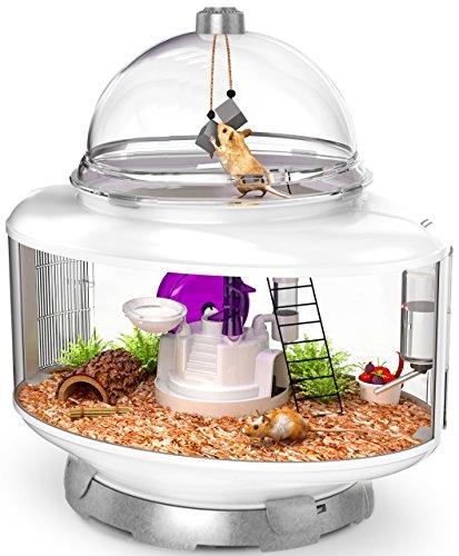 vented terrarium - 2