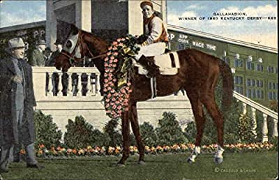 Gallahadion - Winner of 1940 Kentucky Derby Horses Original Vintage Postcard