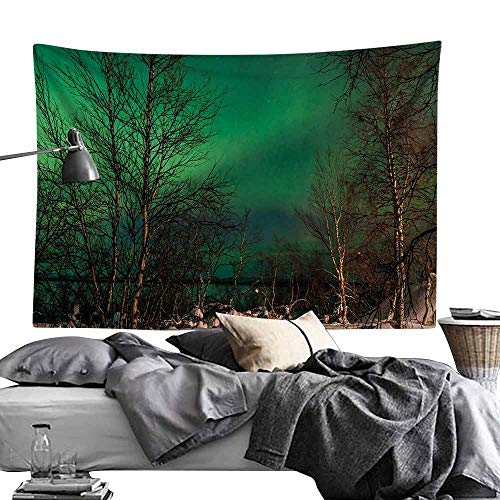 Modern Tapestry, Northern Lights,Snowy Frozen Road Path Between Leafless Trees Finland Park,Jade Green Brown White Wall Art for Studio Room 60