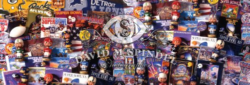 MasterPieces NFL Fanfest Collectibles Panoramic Jigsaw Puzzle (1000-Piece)