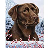 Winter Berries Garden Size Flag Chocolate Labrador Retriever Review