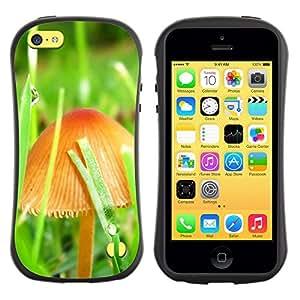 Suave TPU GEL Carcasa Funda Silicona Blando Estuche Caso de protección (para) Apple Iphone 5C / CECELL Phone case / / Mushrooms and grass /