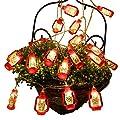 AceList 20/30 LED Lantern Mini Kerosene String Lights for Patio Garden Holiday Home Decorations (Warm White Light)